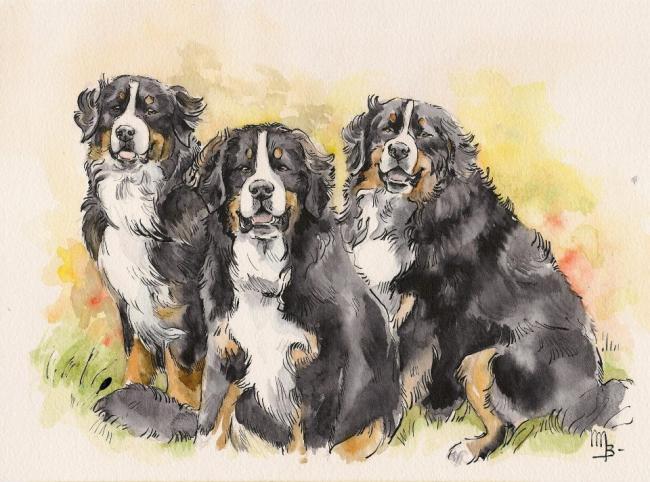 Le trio en aquarelle. Auteur Mathilde Blondeel