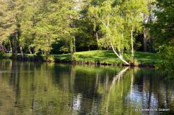 Le parc de Belle Isle
